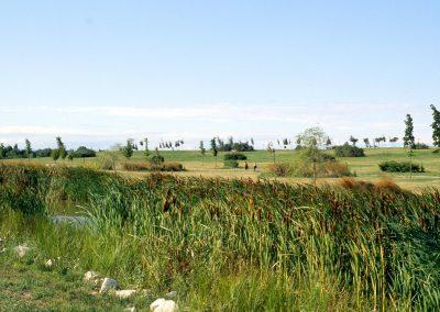 Parco di San Giuliano; 2006